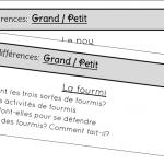 Rallye lecture Grand / Petit